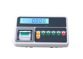T510P带打印显示器/仪表
